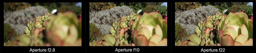 Examples of an image taken at different apertures