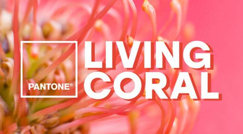 Living Coral Cover
