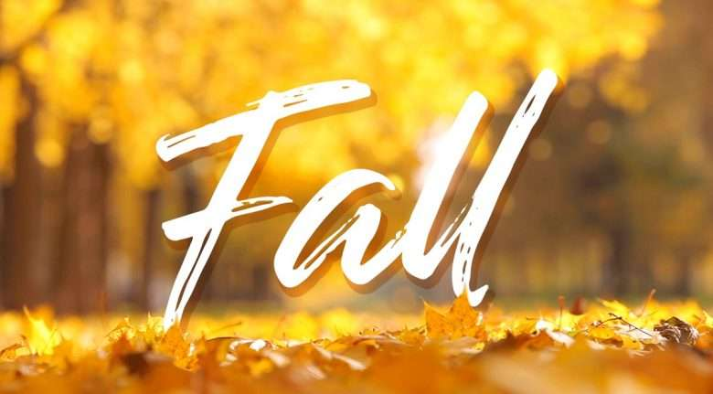 Fall Cover Image